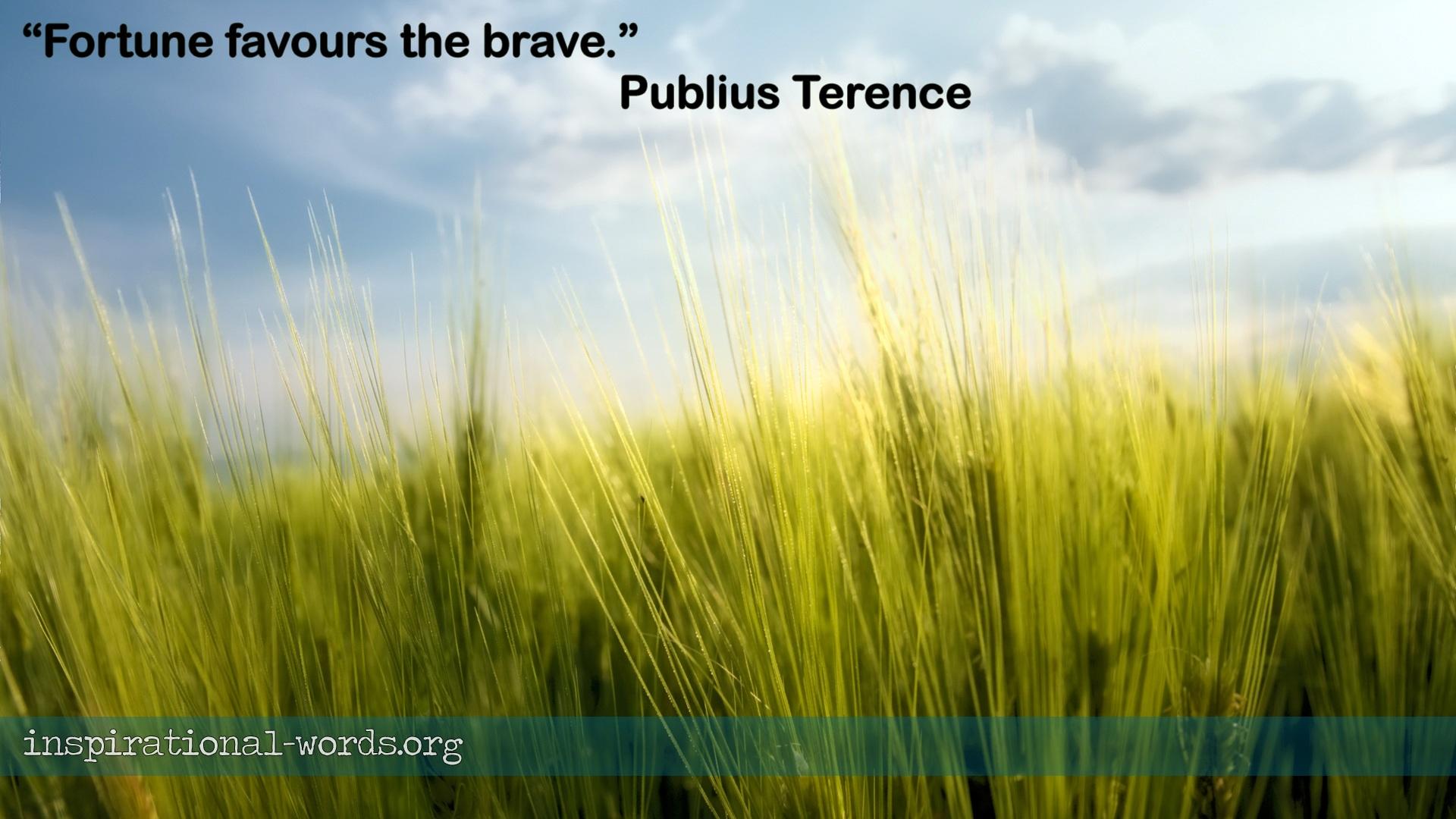 Publius Terence inspirational wallpaper
