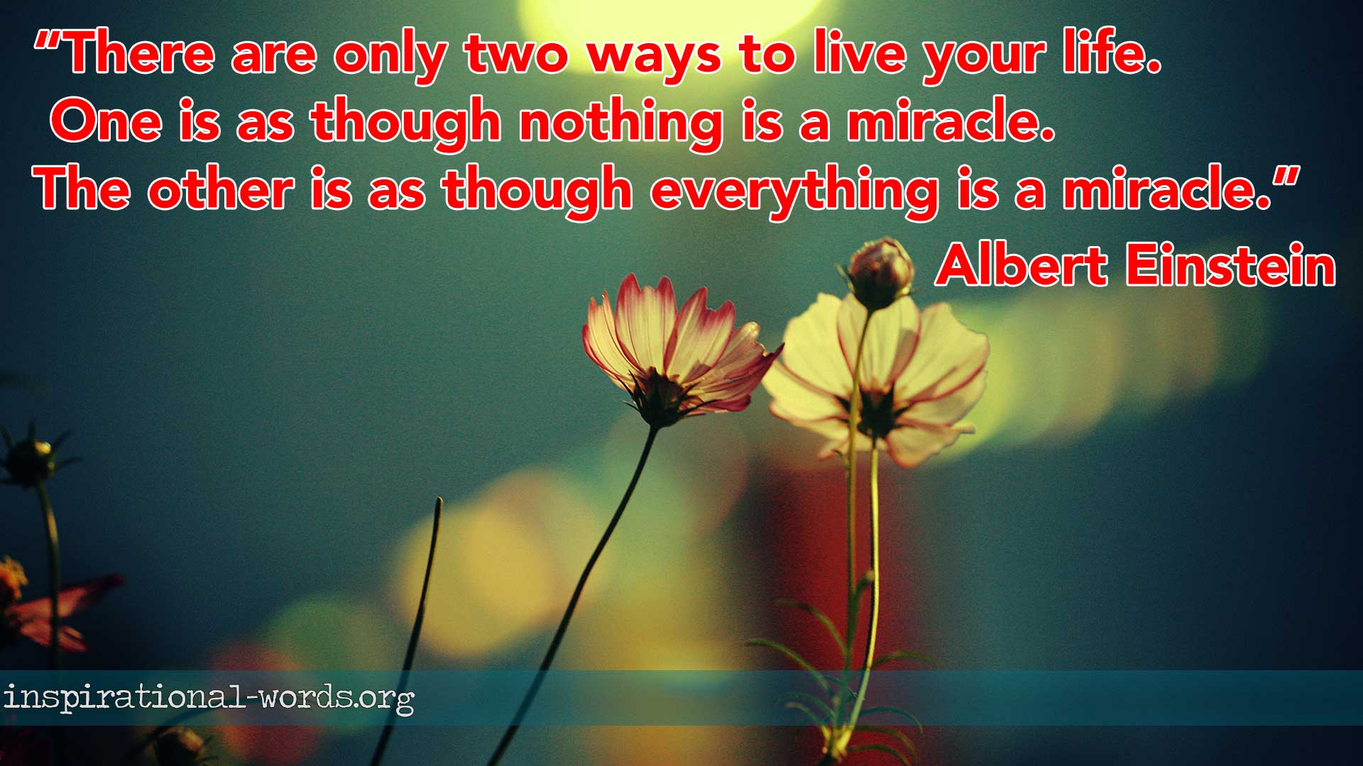 Inspirational Wallpaper Quote of the day: Albert Einstein