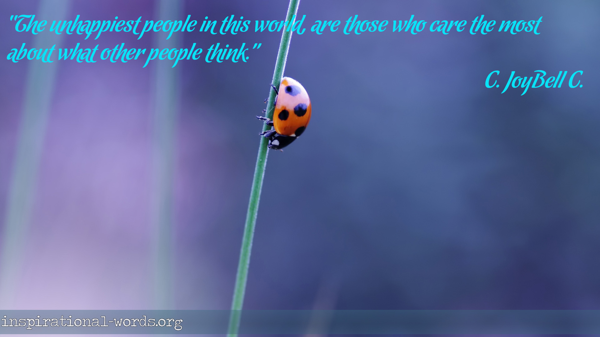 Inspirational Wallpaper Quote by C. JoyBell C.
