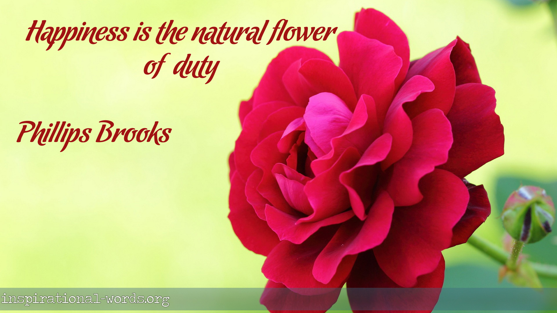 Inspirational Wallpaper Quote by Phillips Brooks