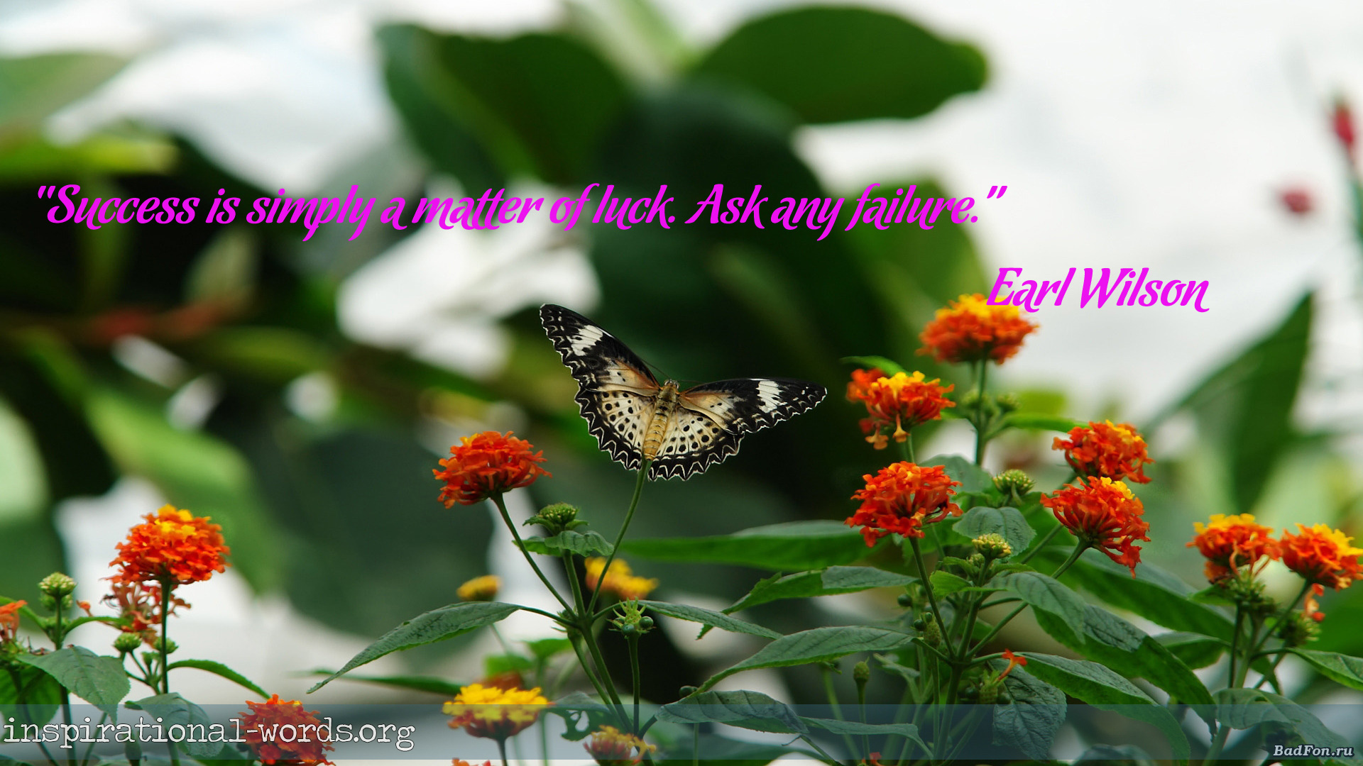 Inspirational Wallpaper Quote by Earl Wilson
