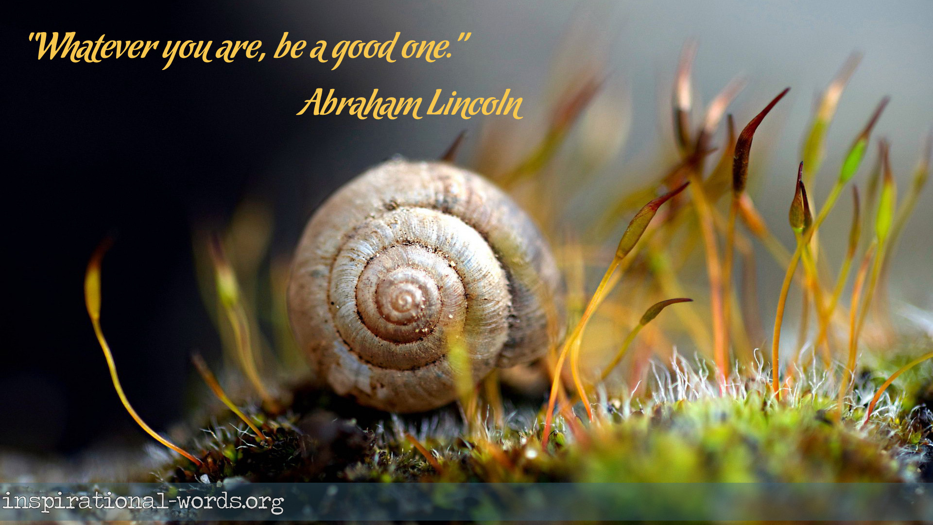 Inspirational Wallpaper Quote by Abraham Lincoln