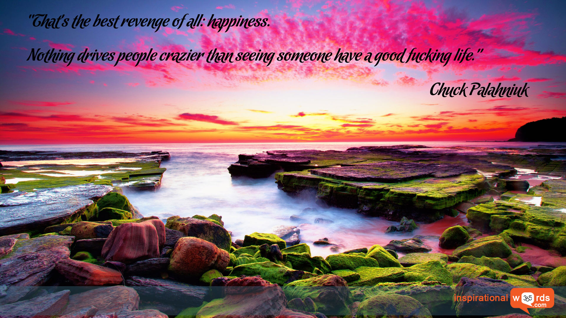 Inspirational Wallpaper Quote by Chuck Palahniuk