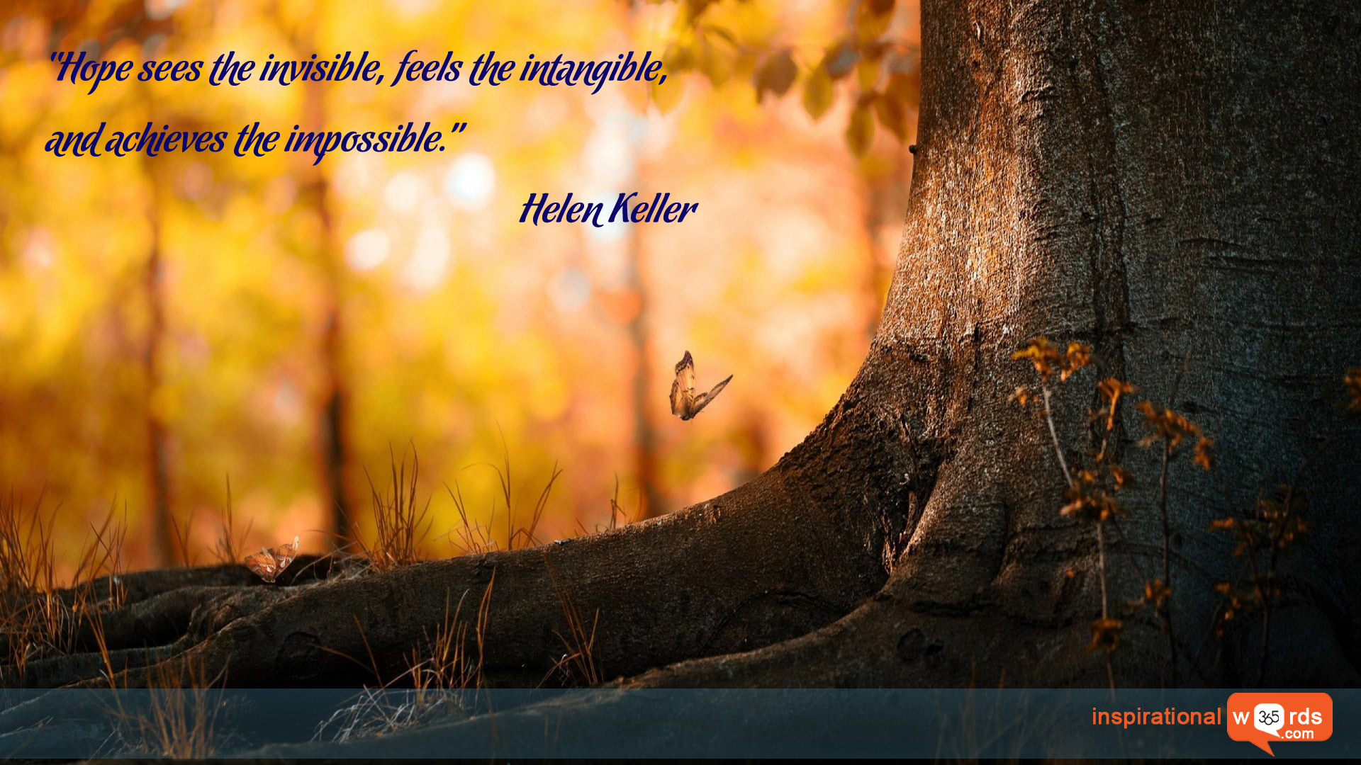Inspirational Wallpaper Quote by Helen Keller