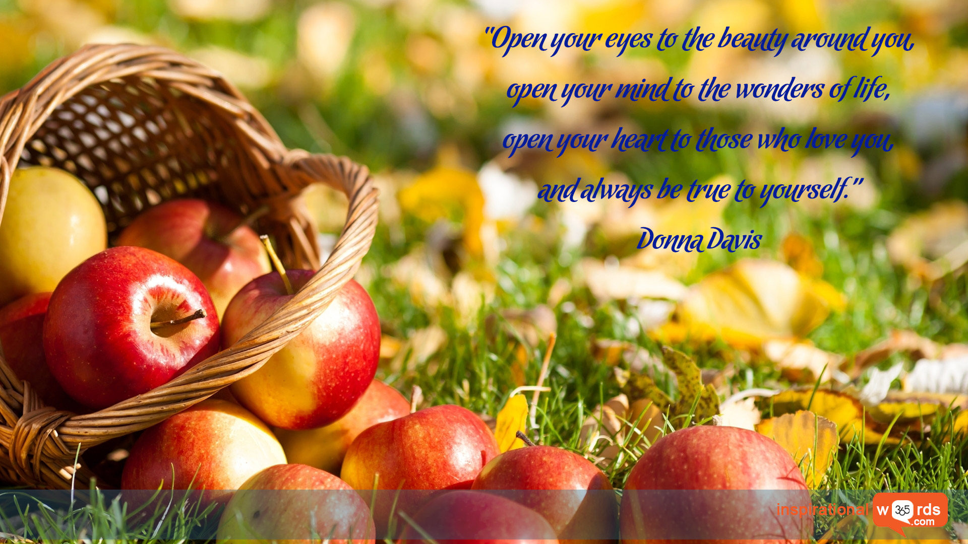 Inspirational Wallpaper Quote by Donna Davis