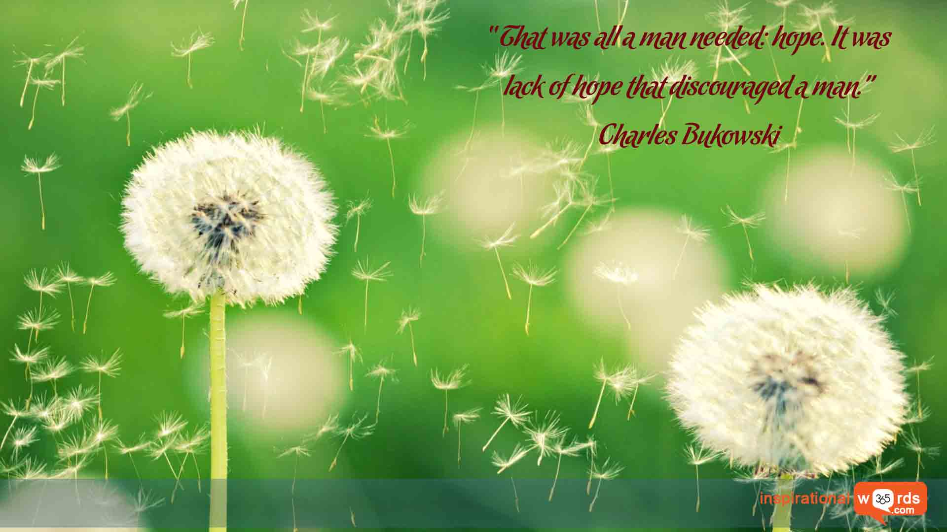 Inspirational Wallpaper Quote by Charles Bukowski
